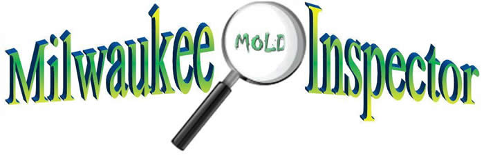 Milwaukee Mold Inspector